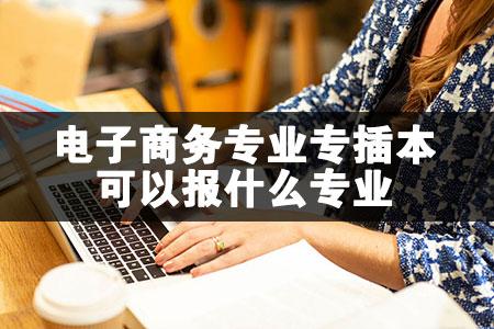 电子商务专业专插本可以报什么专业