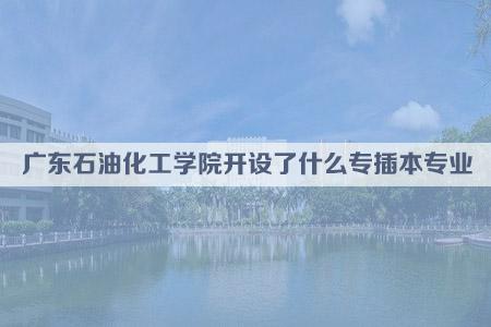 广东石油化工学院开设了什么专插本专业