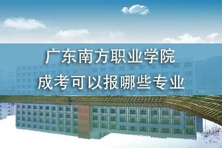 廣東南方職業學院成考可以報哪些專業