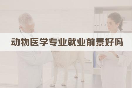 动物医学专业就业前景好吗