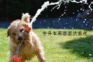 江汉大学专升本英语语法学习五个重点,你掌握了吗?