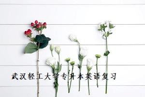武汉轻工大学专升本英语复习怎么做最高效?