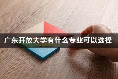 广东开放大学有什么专业可以选择