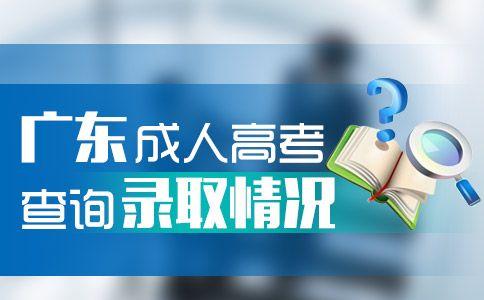 广东成人高考怎么查询录取情况?