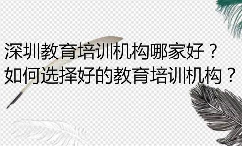 深圳教育培训机构哪家好?如何选择好的教育培训机构?