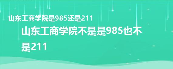 山东工商学院是985还是211