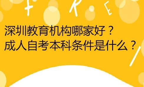 深圳教育机构哪家好