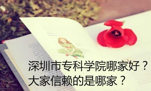 深圳市专科学院哪家好?大家信赖的是哪家?