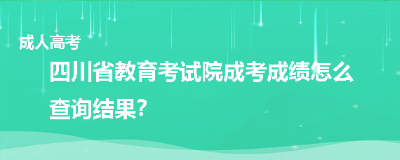 四川省教育考试院成考成绩怎么查询结果