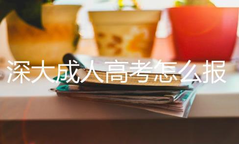 成考大专最容易过的专业有哪些?深圳成考大专在哪报名