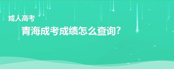 青海成人高考成績怎么查詢