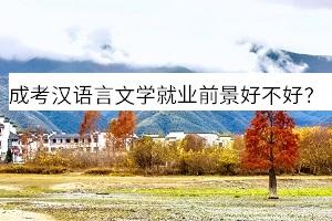 成人高考汉语言文学专业就业前景好不好