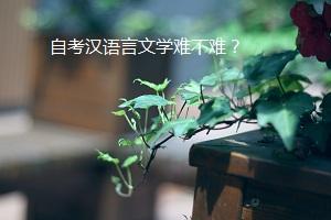 自考汉语言文学难不难?需要复习哪些科目