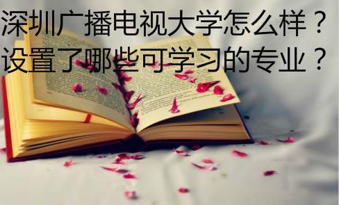 深圳广播电视大学怎么样?有哪些专业