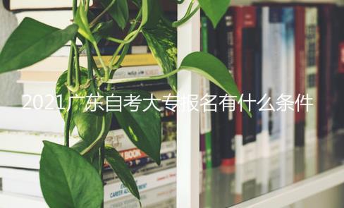 2021年广东自考大专报名有什么条件和要求