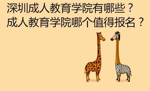 深圳成人教育学院有哪些?哪个值得报名