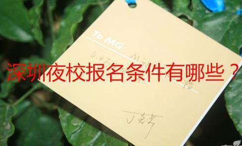 深圳夜校报名条件有哪些