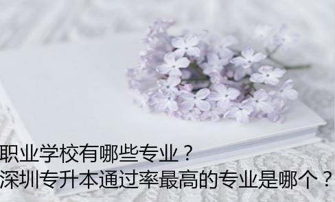 深圳专升本通过率最高的专业是哪个