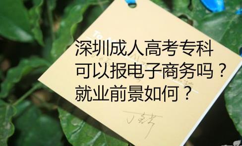 深圳成人高考大专可以报电子商务吗?就业前景如何