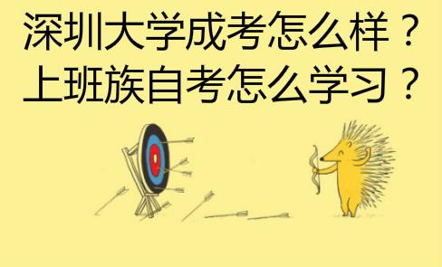 深圳大学成考怎么样?上班族自考怎么学习